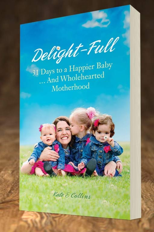 delight-full-paperback1